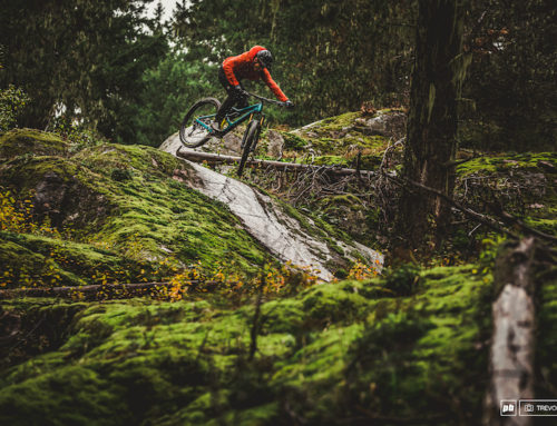 Recapped: The Complete 2020 Pinkbike Field Test